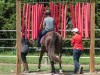 20180905horseback-ridingmn-8504723
